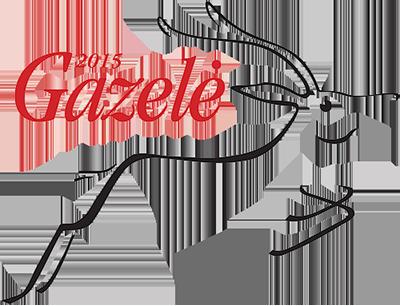 Gazelė 2015 DVtechnika